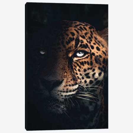 The Jaguar 3-Piece Canvas #ZGA105} by Zenja Gammer Art Print