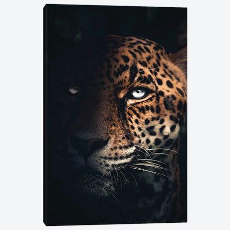 The Jaguar Canvas Print #ZGA105} by Zenja Gammer Art Print