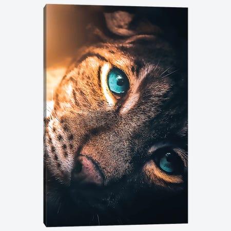 The Aqua Blue Eyed Leopard Canvas Print #ZGA109} by Zenja Gammer Canvas Art