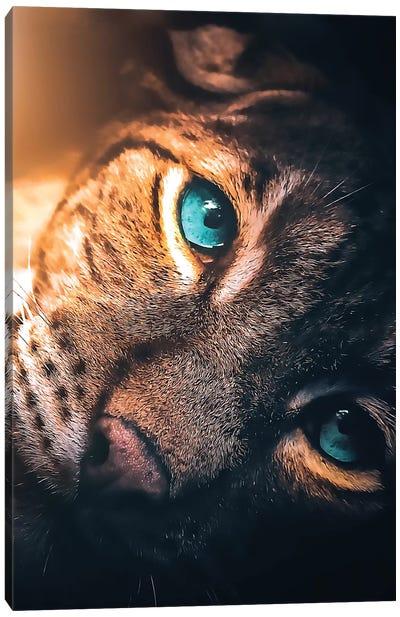 The Aqua Blue Eyed Leopard Canvas Art Print