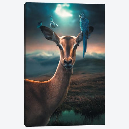 Deer Birds Canvas Print #ZGA10} by Zenja Gammer Canvas Print