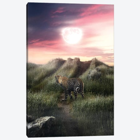 The Leopard And The Moon Canvas Print #ZGA111} by Zenja Gammer Canvas Print