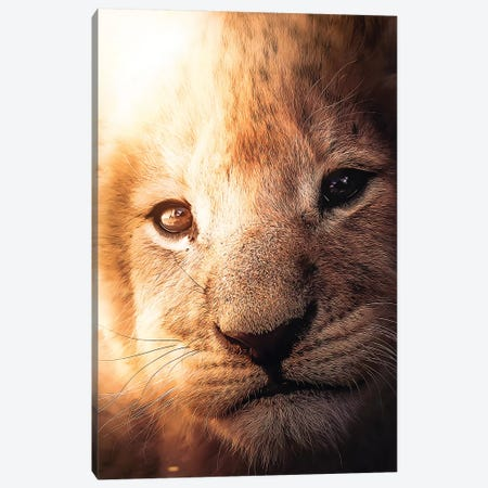 The Lion Cub Canvas Print #ZGA115} by Zenja Gammer Canvas Art