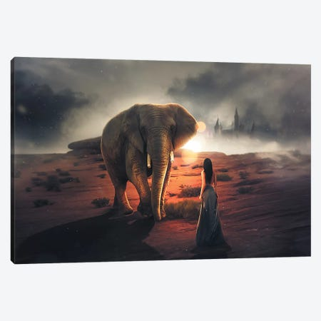 Elephant Dream Canvas Print #ZGA11} by Zenja Gammer Canvas Print