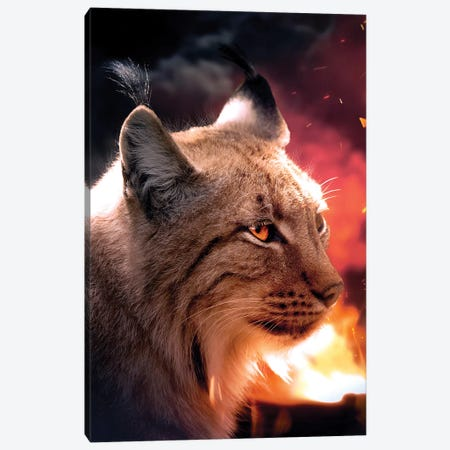 The Lynx And The Fire Canvas Print #ZGA121} by Zenja Gammer Canvas Art