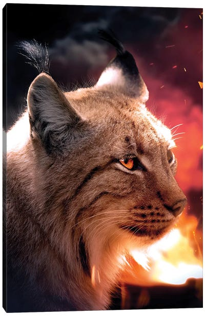 The Lynx And The Fire Canvas Art Print