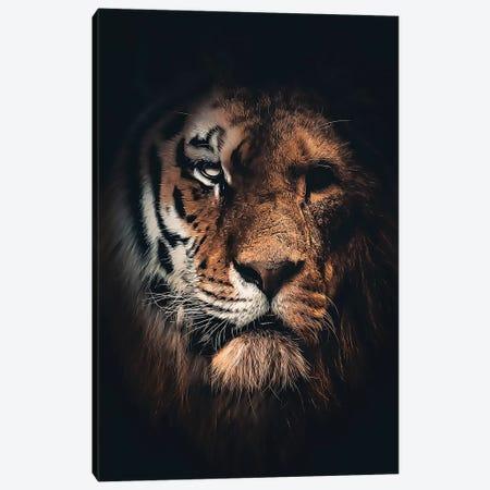 Half Tiger Half Lion Canvas Print #ZGA133} by Zenja Gammer Canvas Print