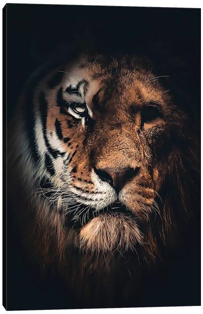 Half Tiger Half Lion Canvas Art Print