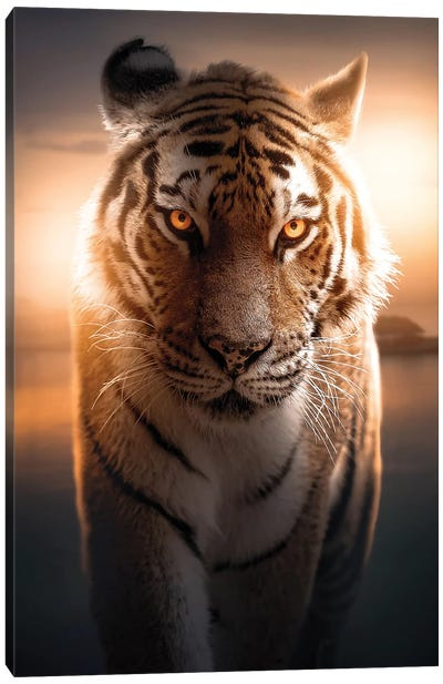 The Glowing Tiger Canvas Art Print