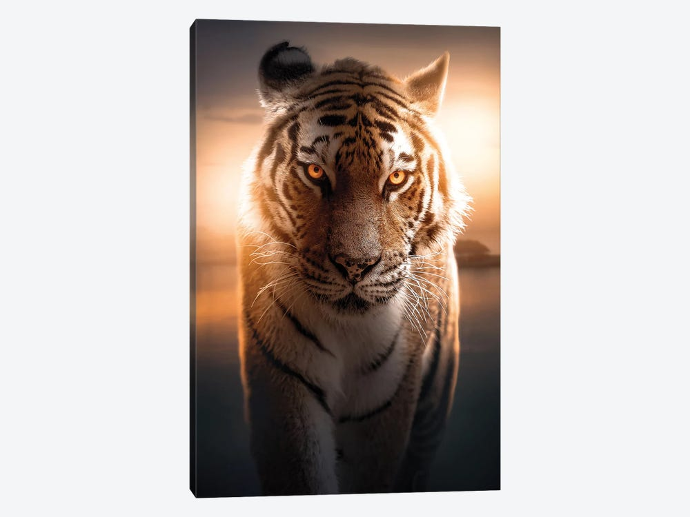 The Glowing Tiger by Zenja Gammer 1-piece Art Print