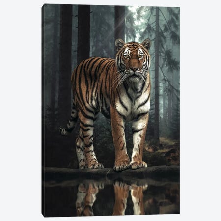 The Tiger In The Forest Canvas Print #ZGA135} by Zenja Gammer Canvas Artwork
