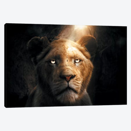 The Lion In The Cave Canvas Print #ZGA142} by Zenja Gammer Canvas Artwork