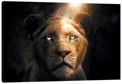 The Lion In The Cave Canvas Art Print