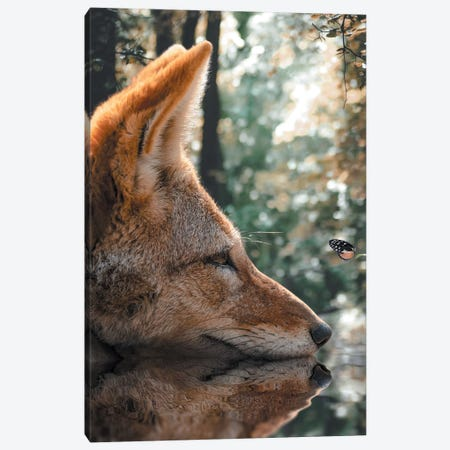 The Fox And The Butterfly Canvas Print #ZGA143} by Zenja Gammer Canvas Wall Art