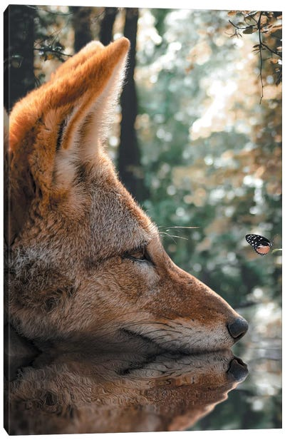 The Fox And The Butterfly Canvas Art Print