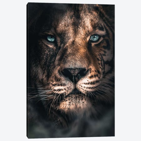 Half A Tiger Half A Lion Canvas Print #ZGA148} by Zenja Gammer Canvas Wall Art