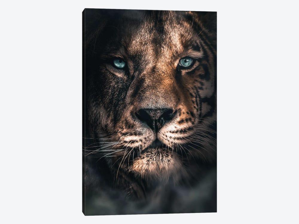 Half A Tiger Half A Lion by Zenja Gammer 1-piece Canvas Wall Art