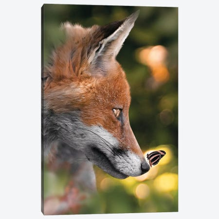 The Fox & Cute Butterfly Canvas Print #ZGA160} by Zenja Gammer Canvas Art
