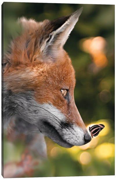 The Fox & Cute Butterfly Canvas Art Print