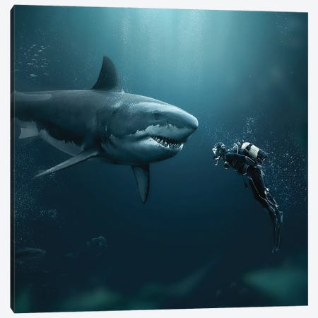Shark Meets Diver Canvas Print #ZGA162} by Zenja Gammer Canvas Wall Art