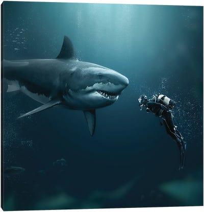 Shark Meets Diver Canvas Art Print