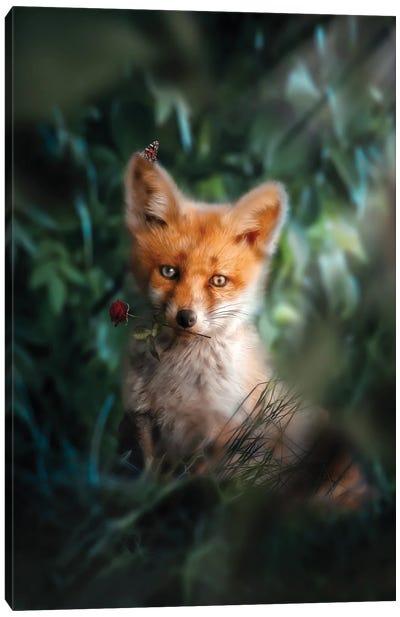 The Gentle Fox Cub Canvas Art Print