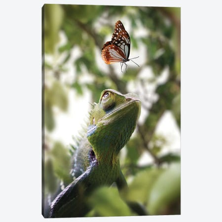 Chameleon & Butterfly Canvas Print #ZGA166} by Zenja Gammer Canvas Print