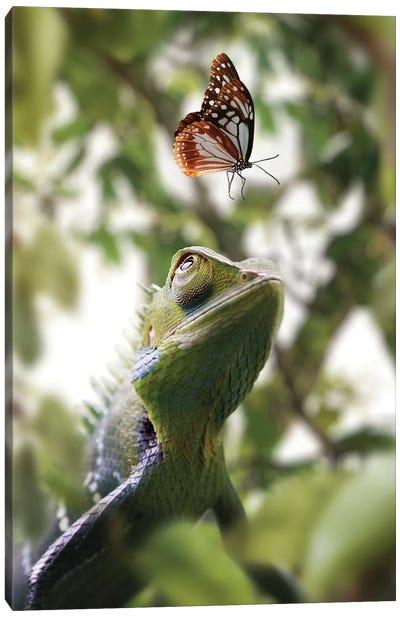 Chameleon & Butterfly Canvas Art Print