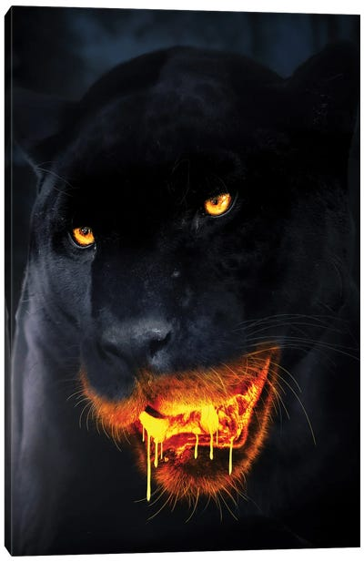 Hungry For Gold Canvas Art Print
