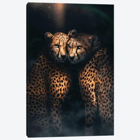Cheetah Love Canvas Print #ZGA171} by Zenja Gammer Canvas Print