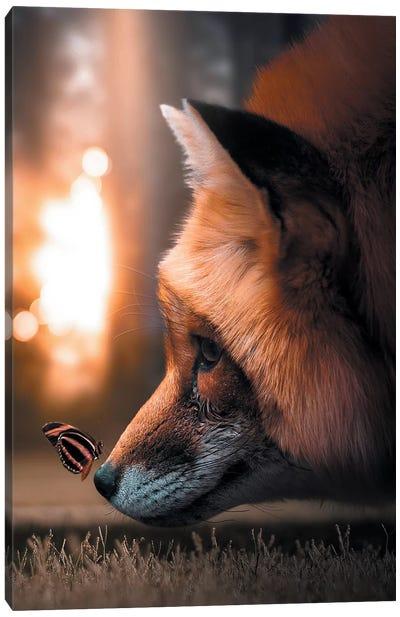 Fox Butterfly Canvas Art Print