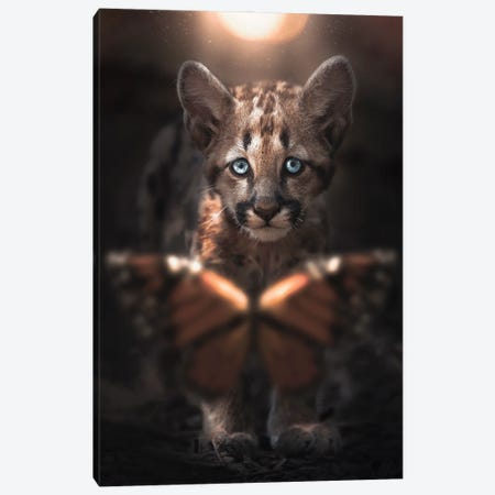 Cub & Butterfly Canvas Print #ZGA184} by Zenja Gammer Canvas Print