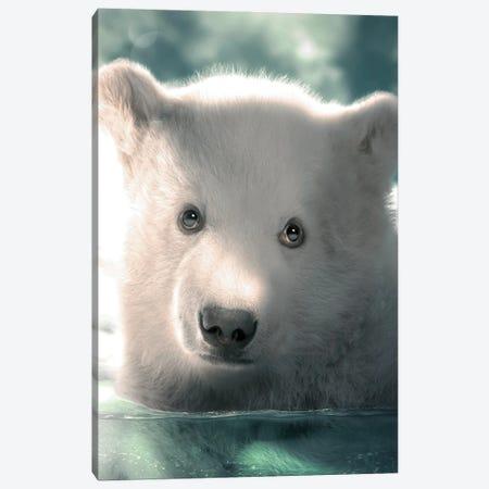 Polar Bear Cub Canvas Print #ZGA188} by Zenja Gammer Canvas Wall Art
