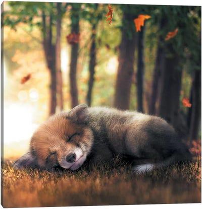 Fox Cub Sleeping Canvas Art Print