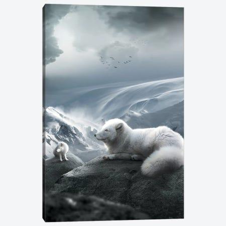 Arctic Foxes Canvas Print #ZGA1} by Zenja Gammer Canvas Artwork