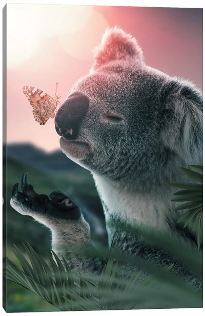 Koala Butterfly Canvas Art Print