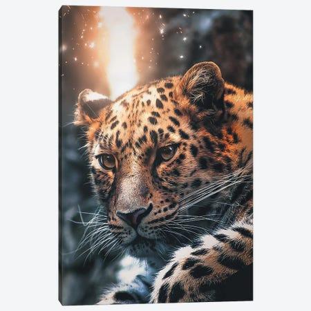 Leopard Sparkles Canvas Print #ZGA29} by Zenja Gammer Canvas Artwork