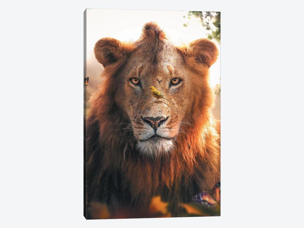 Lion Bird by Zenja Gammer 1-piece Canvas Art
