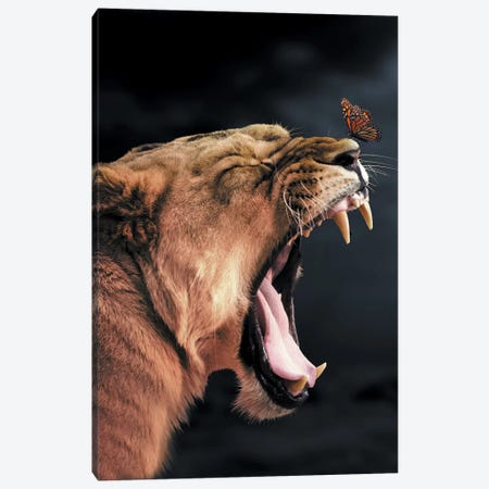Lioness Butterfly Canvas Print #ZGA35} by Zenja Gammer Canvas Art