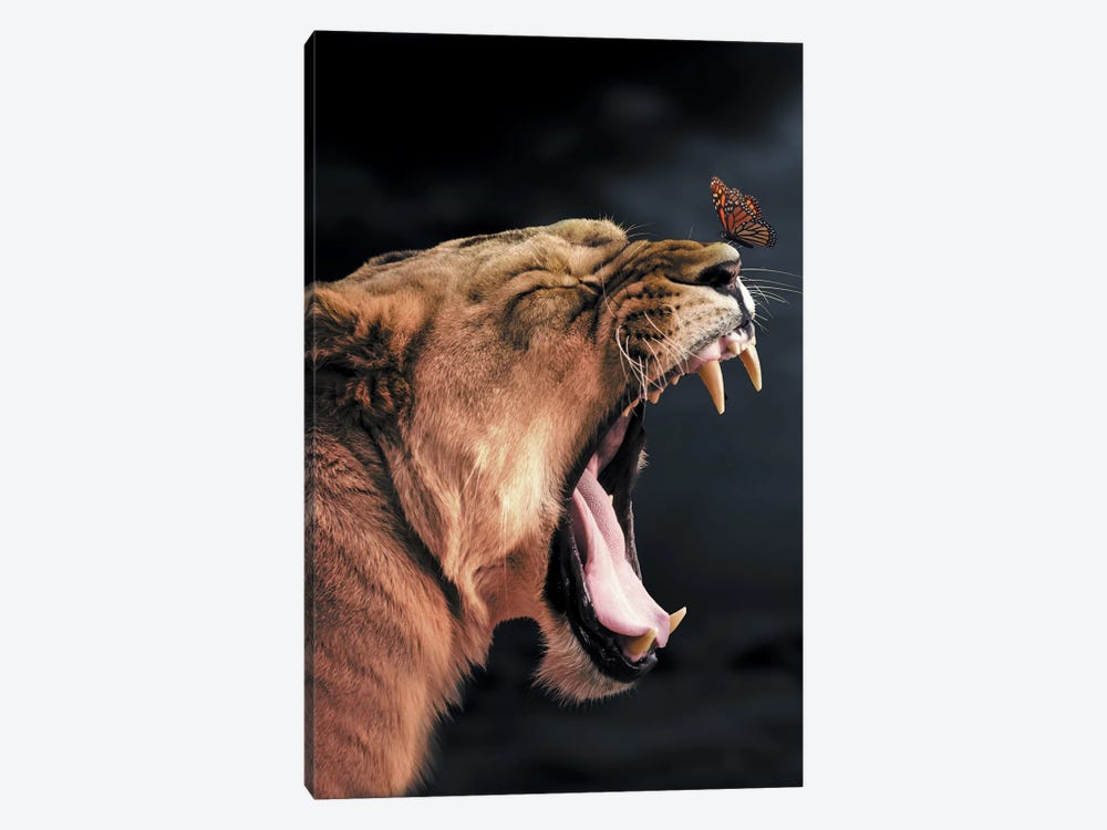 Lioness Butterfly by Zenja Gammer 1-piece Canvas Print