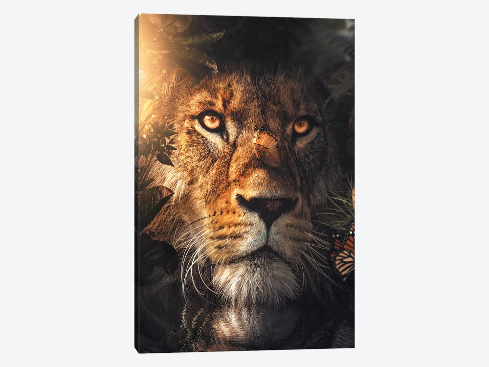 Lion Hiding by Zenja Gammer 1-piece Canvas Art Print