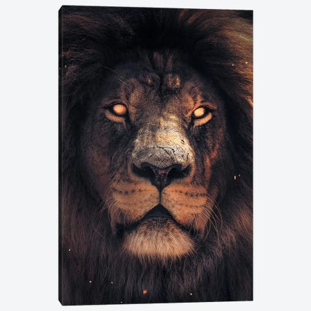 Lion Scary Canvas Print #ZGA38} by Zenja Gammer Canvas Print