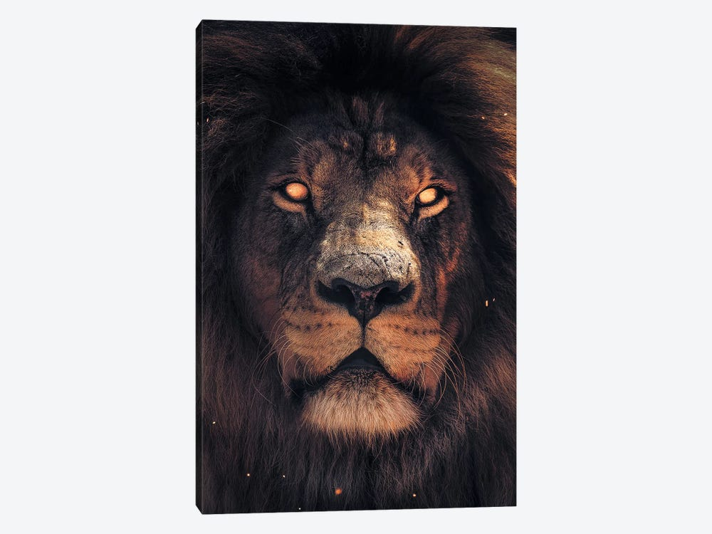 Lion Scary by Zenja Gammer 1-piece Canvas Artwork