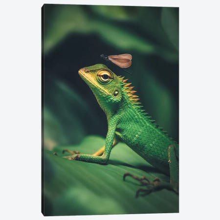 Lizard Dragonfly Canvas Print #ZGA39} by Zenja Gammer Canvas Print