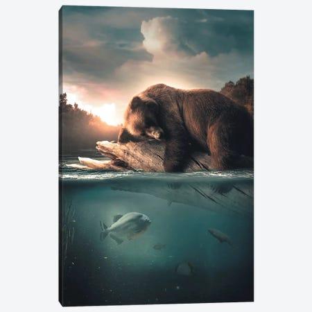 Bear Floating Canvas Print #ZGA3} by Zenja Gammer Canvas Art