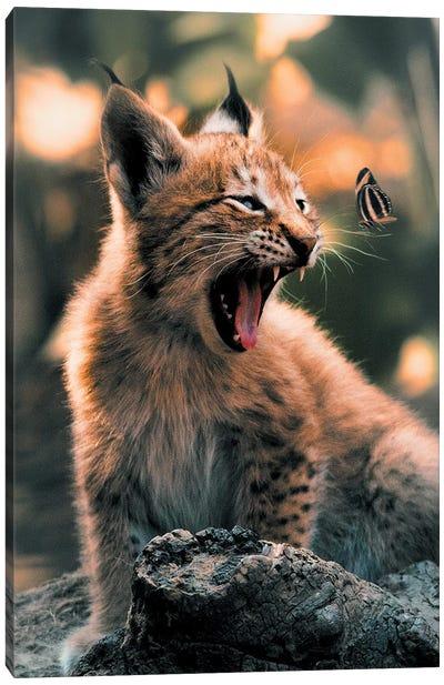 Lynx Cub Butterfly Canvas Art Print