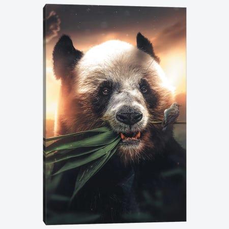 Panda Bird Canvas Print #ZGA42} by Zenja Gammer Canvas Art