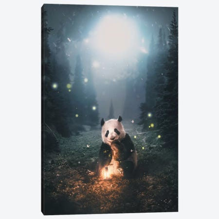 Panda Forest Canvas Print #ZGA43} by Zenja Gammer Canvas Wall Art