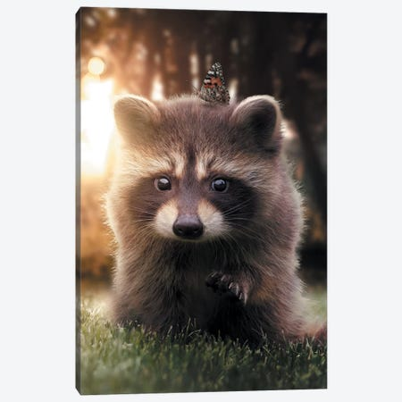 Raccoon Butterfly Canvas Print #ZGA45} by Zenja Gammer Art Print