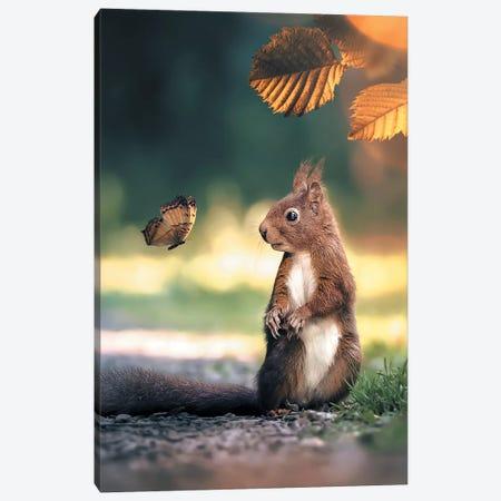 Squirrel Butterfly Canvas Print #ZGA48} by Zenja Gammer Canvas Artwork